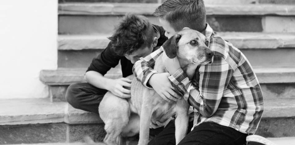 boys_and_dog